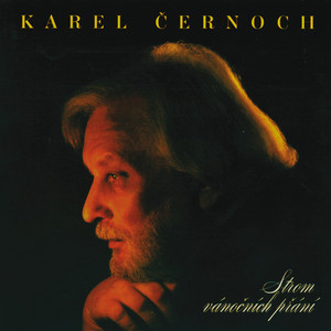 Karel Černoch - Strom vanocnich prani