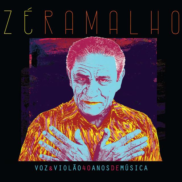 Voz & Violão - 40 Anos de Música