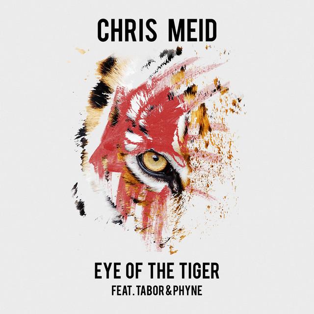 Eye of the Tiger  - Chris Meid
