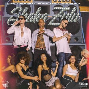 Shaka Zulu Albümü